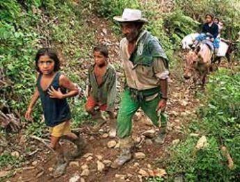 Situación precaria de los campesinos en las montañas de Colombia.